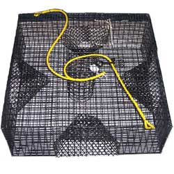 Willapa Marine Puget Sound Shrimp Pot, Crab & Lobster Traps for Boats & Yachts