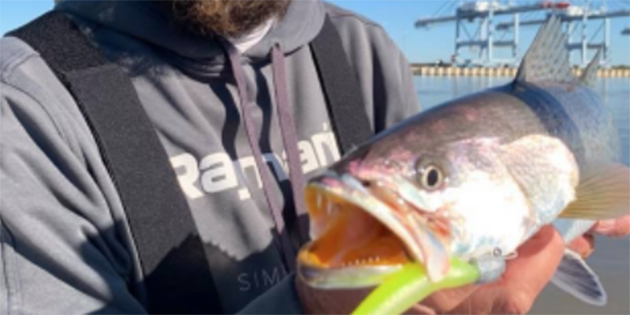 Springtime Inshore Fishing at West Marine Mobile